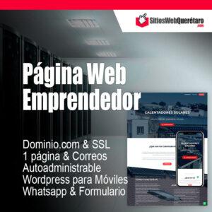 Plan Página Web Emprendedor PyMe económica