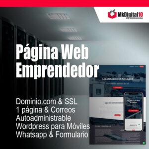 Plan Página Web Emprendedor