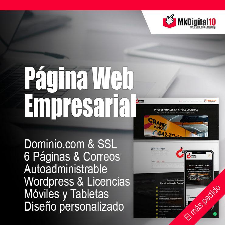 Plan Página Web Empresarial Empresa
